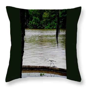 The Single Flyer Throw Pillow