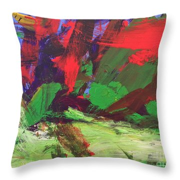 The Sky Throw Pillow by Donald J Ryker III
