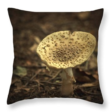 The Slow Passing Of Autumn Throw Pillow