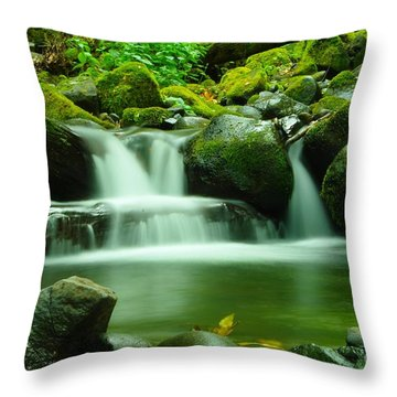 The Small Water Throw Pillow by Jeff Swan