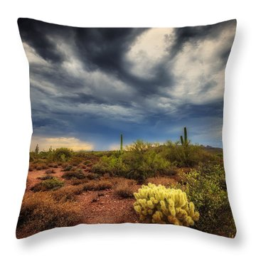 The Smell Of Rain Throw Pillow by Rick Furmanek