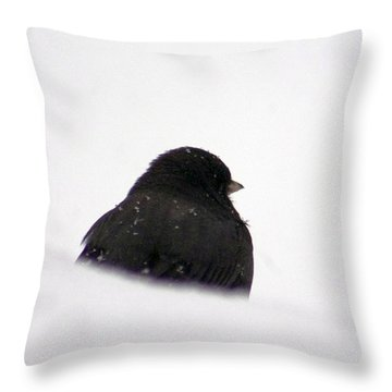 The Snow Thinker Throw Pillow