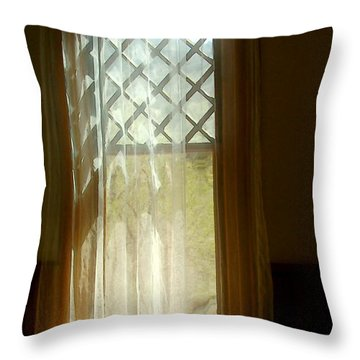 The Softness Of A Summer Afternoon Throw Pillow by RC deWinter