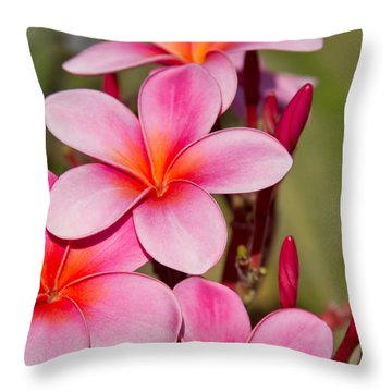 The Sonnets Of Sunset Throw Pillow