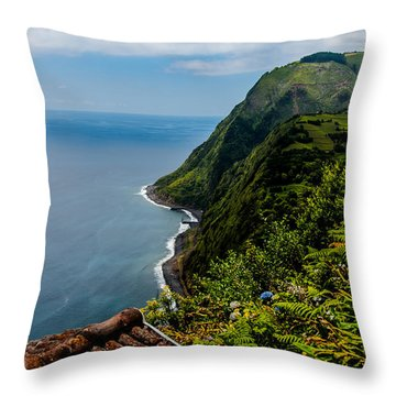 The Southeastern Coast Throw Pillow