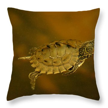 The Southeastern Map Turtle Throw Pillow by Kim Pate