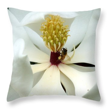 The Southern Magnolia Throw Pillow by Kim Pate