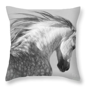 The Spanish Stallion Tosses His Head Throw Pillow