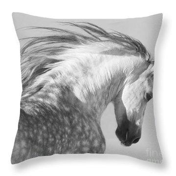 Stallions Throw Pillows
