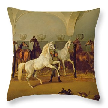 The Stables At Babolna Throw Pillow