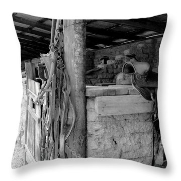 Throw Pillow featuring the photograph Very Stable by Natalie Ortiz