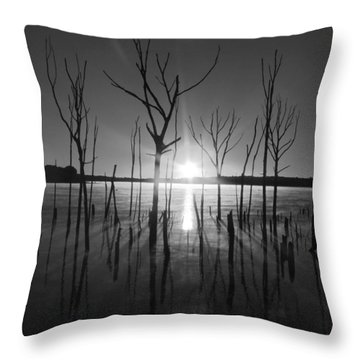 The Star Arrives Throw Pillow by Raymond Salani III