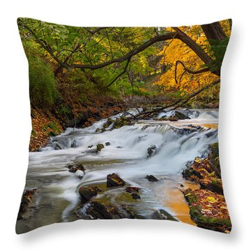 The Still River Throw Pillow by Bill Wakeley