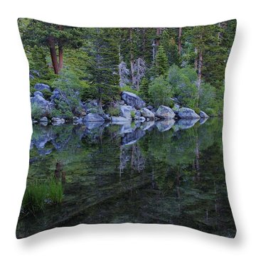 Throw Pillow featuring the photograph The Stillness Of Dawn  by Sean Sarsfield
