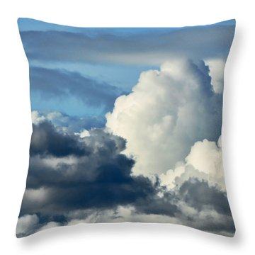 The Storm Arrives Throw Pillow by Susan Wiedmann