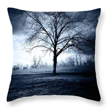 The Storm Throw Pillow by Susan Bordelon