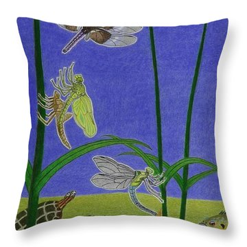 The Story Of The Dragonfly With Description Throw Pillow by Gerald Strine