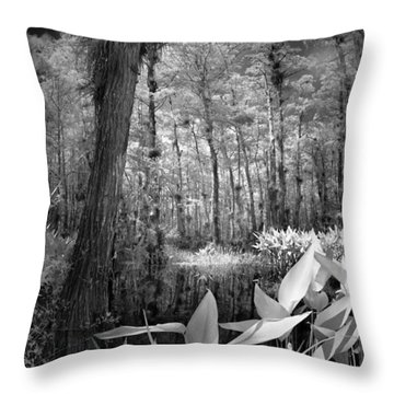 Throw Pillow featuring the photograph The Strand by Bradley R Youngberg