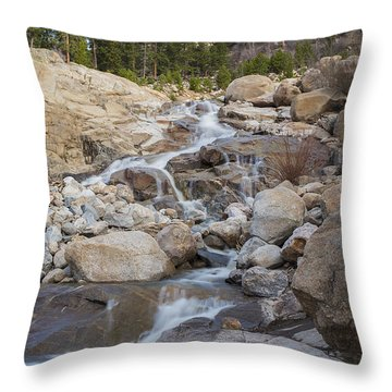 The Stream Throw Pillow by Amber Kresge