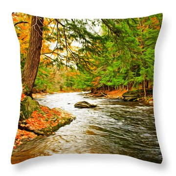 The Stream Throw Pillow by Bill Howard