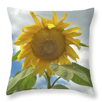 The Sun Is Out Throw Pillow by Arthur Fix
