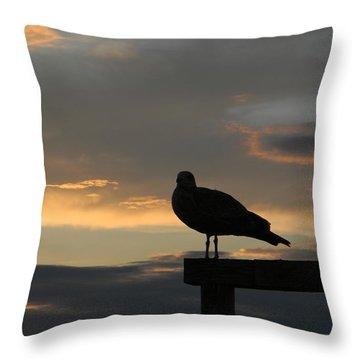 The Sunset Perch Throw Pillow by Jean Goodwin Brooks
