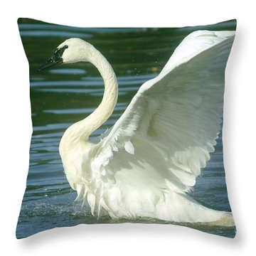The Swan Rises  Throw Pillow by Jeff Swan