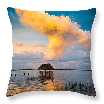 The T Cloud Throw Pillow