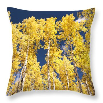 The Tall Ones Throw Pillow by The Forests Edge Photography - Diane Sandoval