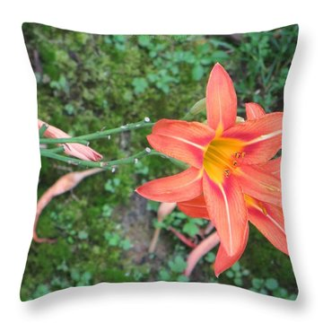 The Tawny Daylily Throw Pillow by Sonali Gangane