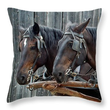 Throw Pillow featuring the photograph The Team by Ron Haist