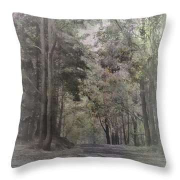 Throw Pillow featuring the photograph The Terrace by Elaine Teague