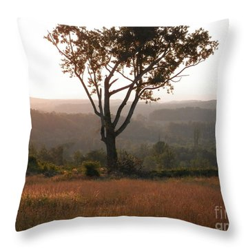 The Test Of Time By Angelia Clay Throw Pillow