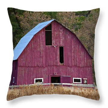 The Test Of Time... Throw Pillow