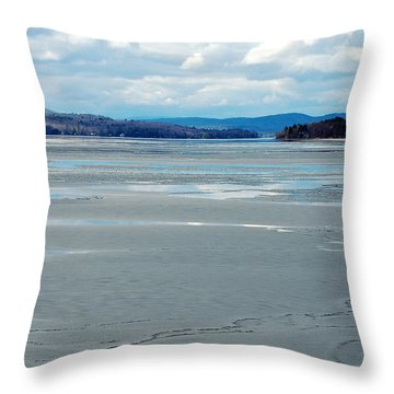 The Thaw Throw Pillow