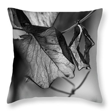 The Things Left Unsaid Throw Pillow