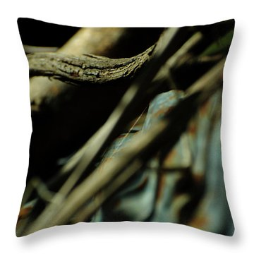 The Thread Throw Pillow by Rebecca Sherman