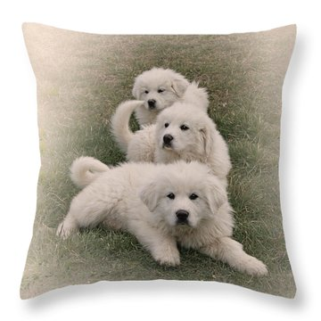 The Three Throw Pillow