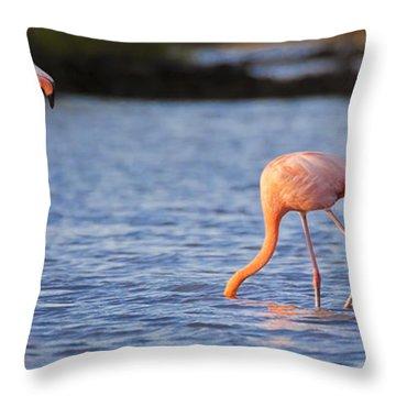 The Three Flamingos Throw Pillow