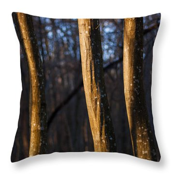 Throw Pillow featuring the photograph The Three Graces by Davorin Mance