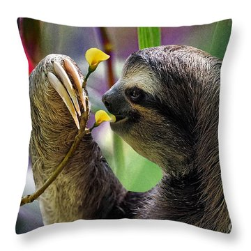 The Three-toed Sloth Throw Pillow by Gary Keesler