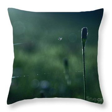 The Tightrope Walker  Throw Pillow by Aimelle