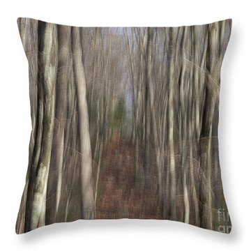 The Trail North Throw Pillow