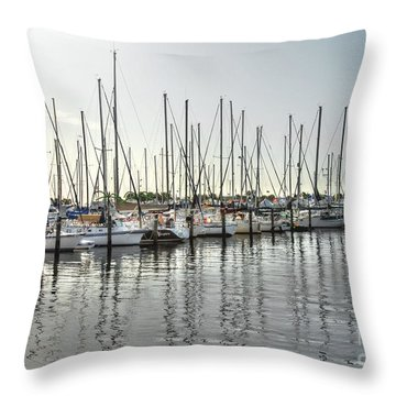 The Trail To Water Throw Pillow
