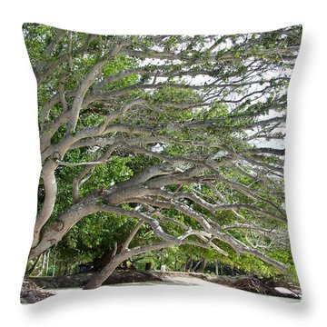 Throw Pillow featuring the photograph The Tree by Andrea Anderegg