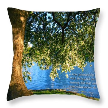 The Tree God Spoke Of... Throw Pillow