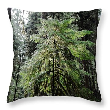 The Tree In The Forest Throw Pillow