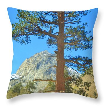 Throw Pillow featuring the photograph The Tree by Marilyn Diaz