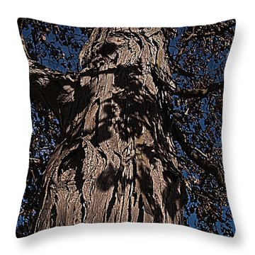 Throw Pillow featuring the photograph The Tree Of Life by Deborah Klubertanz