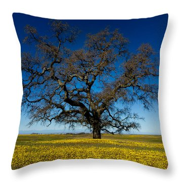 The Tree On Table Mountain Throw Pillow